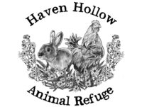 Haven Hollow